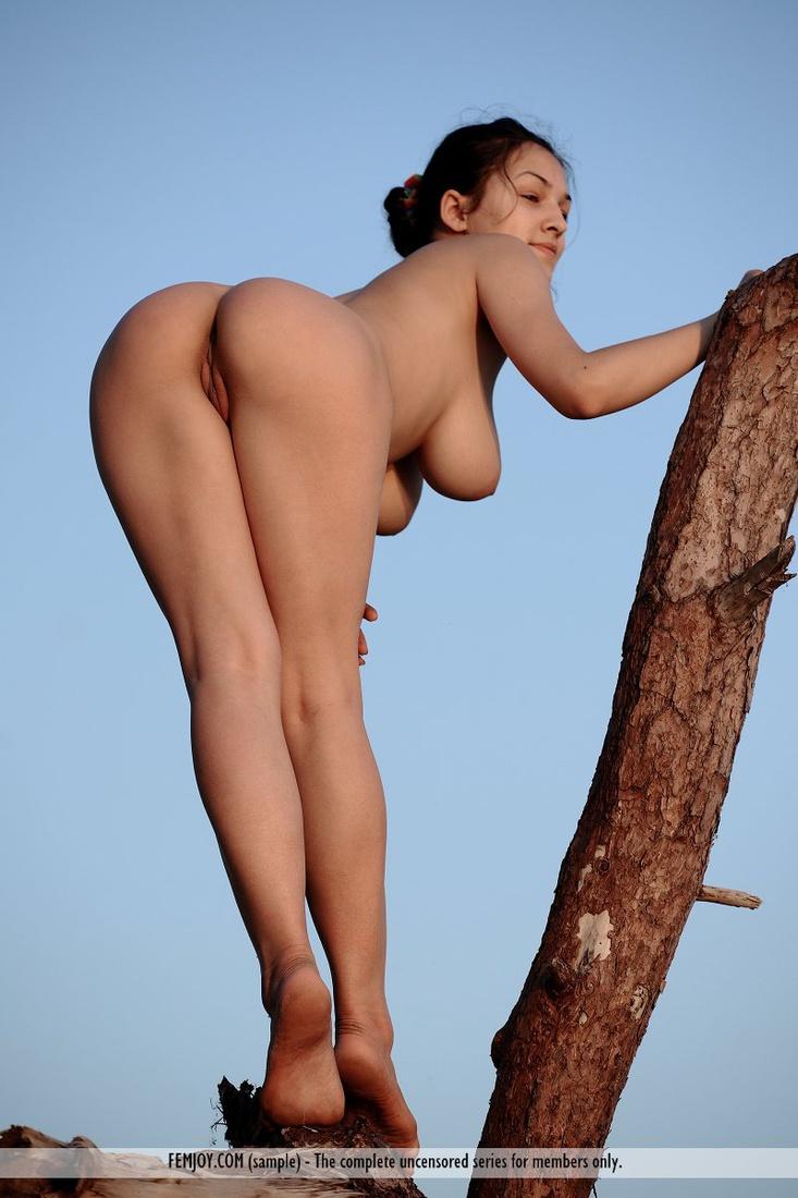 nude girls ass busty